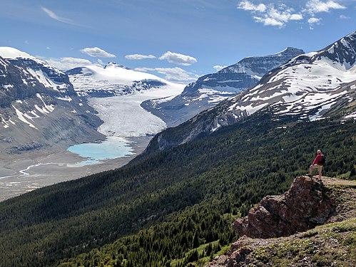Saskatchewan Glacier 2017.jpg