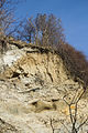 Sassnitz, Steilküste Abbruchkante 3.jpg