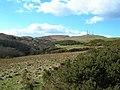 Sauchrie Glen - geograph.org.uk - 372639.jpg