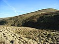 Scadlaw - geograph.org.uk - 331804.jpg
