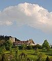 Schloss Wolfurt .JPG
