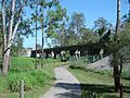 Scrubby Creek crossing Kingston Queensland Australia.jpg