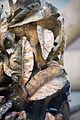 Sculpture Blaetterbrunnen Emil Cimiotti Barinsgstrasse Hanover Germany 02.jpg