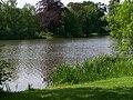 See im Schlosspark - panoramio.jpg