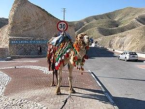 "Highway 1 (Israel) - ""Scenic Overlook"" at Sea Level"