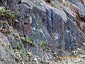 Serra Vengo em Manica - panoramio - Nelson Deolinda Amin… (3).jpg