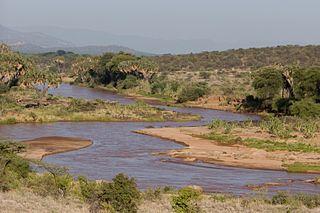 Ewaso Ngiro river in Tanzania