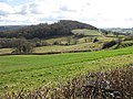 Sheep pasture above the Monnow Valley - geograph.org.uk - 1190239.jpg