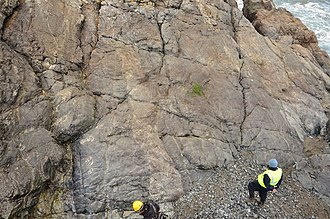 Sheeted dyke complex - Sheeted dyke complex of the Lizard ophiolite in Cornwall, England