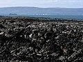 Shoreline, Ballymacormick Point (1) - geograph.org.uk - 728790.jpg
