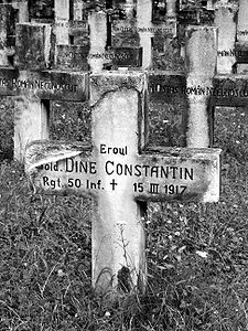 Sinaia - military cemetery from WWI (bw).jpg