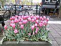 Sint Antoniesluis, Amsterdam, 20150425b.jpg