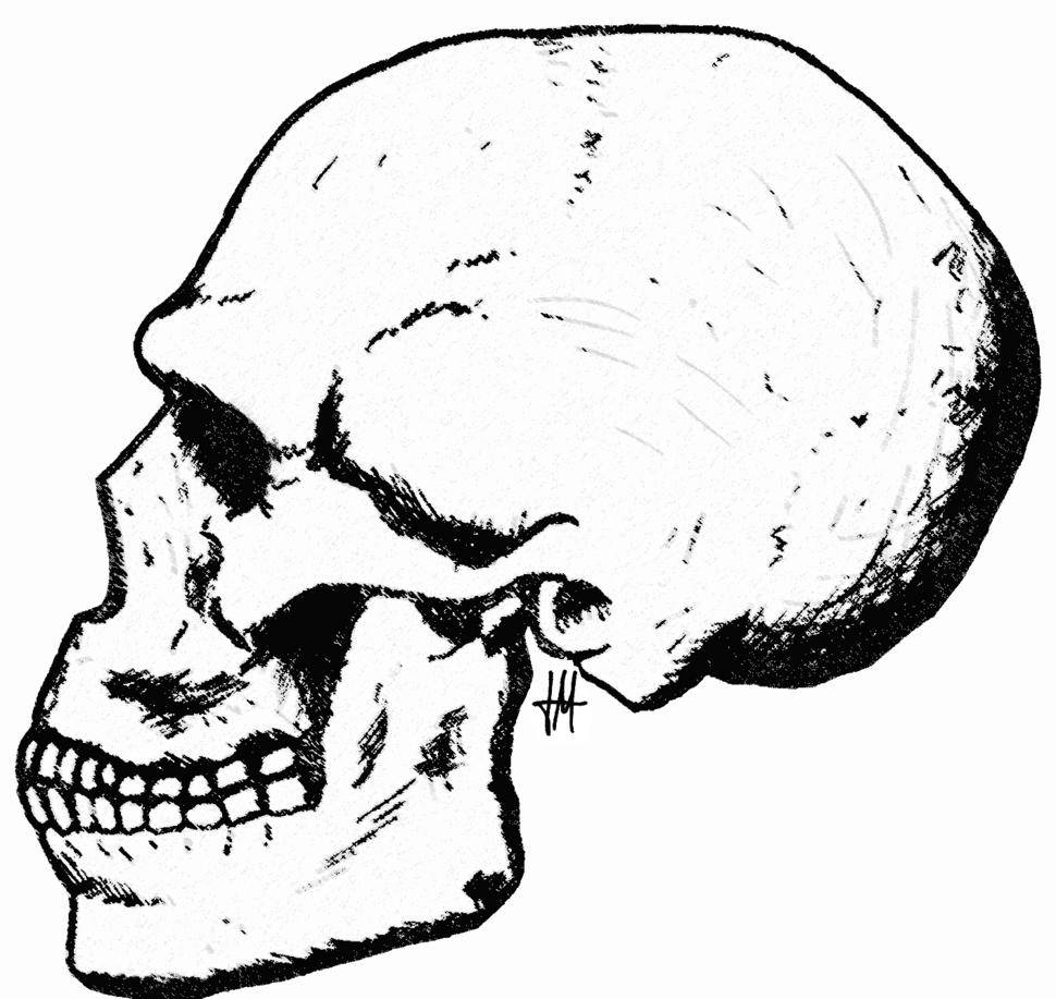 Skhül skull-5