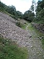 Slight landslide along the Heddon's path - geograph.org.uk - 917546.jpg