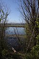 Smith & Bybee Lakes (13764431235).jpg