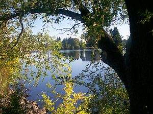 Idaho Falls, Idaho - Snake River seen through trees along the greenbelt