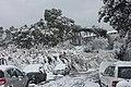 Snow in Rome.29.jpg