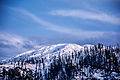 Snow on the Malam jabba mountains swatvalley.jpg