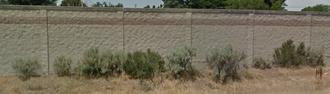 Spokane Valley - Sagebrush and Greasewood along Interstate 90 in Spokane Valley