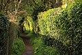 Spring in Epsom (7197770490).jpg