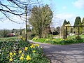Spring in the East Hampshire Lanes - geograph.org.uk - 368766.jpg