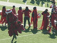 Stanford Tree at 2008 Big Game.JPG