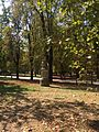 Statua presente nel Parco Ducale.jpg