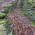Steps (12599478675).jpg