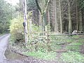 Stile into the woods - geograph.org.uk - 1036242.jpg