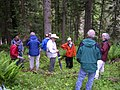 Stillinger Herbarium and Idaho Native Plant Society Tour, Northern Idaho 2005 1.jpg