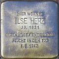 Stolpersteine Köln Blumenthalstrasse 2 Ilse Herz.jpg