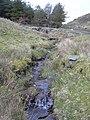 Stream, Grane - geograph.org.uk - 1205670.jpg