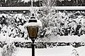 Street lamp during a snowfall.JPG