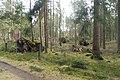 Stukenbrock - Furlbachtal - 9.jpg