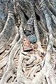 Suhothai Historical Park (11901223814).jpg