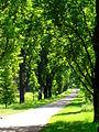 Sychrov, park zamkowy(Aw58).JPG