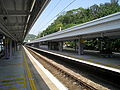 Tai Po Market Station Platform 2009.jpg