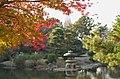 Tamamo-Ike(Beautiful Algae pond), Shinjuku Gyoen(Shinjuku Imperial Garden) - 玉藻池, 新宿御苑 - panoramio.jpg