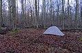 Tent in Bois d'Havré (DSC 1318).jpg