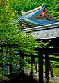 The Art of Preserving One's Own Culture and Heritage XXXI (KYOTO-JAPAN-SANZEN-IN) (1294684643).jpg