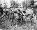 The Battle of Messines, June 1917 Q5467.jpg