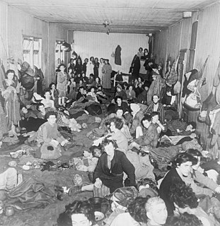 Bergen-Belsen displaced persons camp human settlement