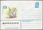 The Soviet Union 1980 Illustrated stamped envelope Lapkin 80-160(14174)face(The great white pelican).jpg