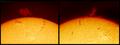 The prominences on today's Sun (26110502442).png