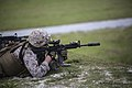 Through the scope, 2nd Battalion, 6th Marines prepares weapons, Marines for deployment 150903-M-ZM882-351.jpg