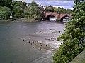Tidal River Dee West of the Old Dee Bridge - geograph.org.uk - 11183.jpg