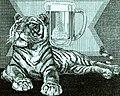 Tigre Bock-Kronenbourg-1934 (cropped).jpg