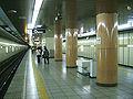 TokyoMetro-Y02-Chikatetsu-narimasu-station-platform.jpg