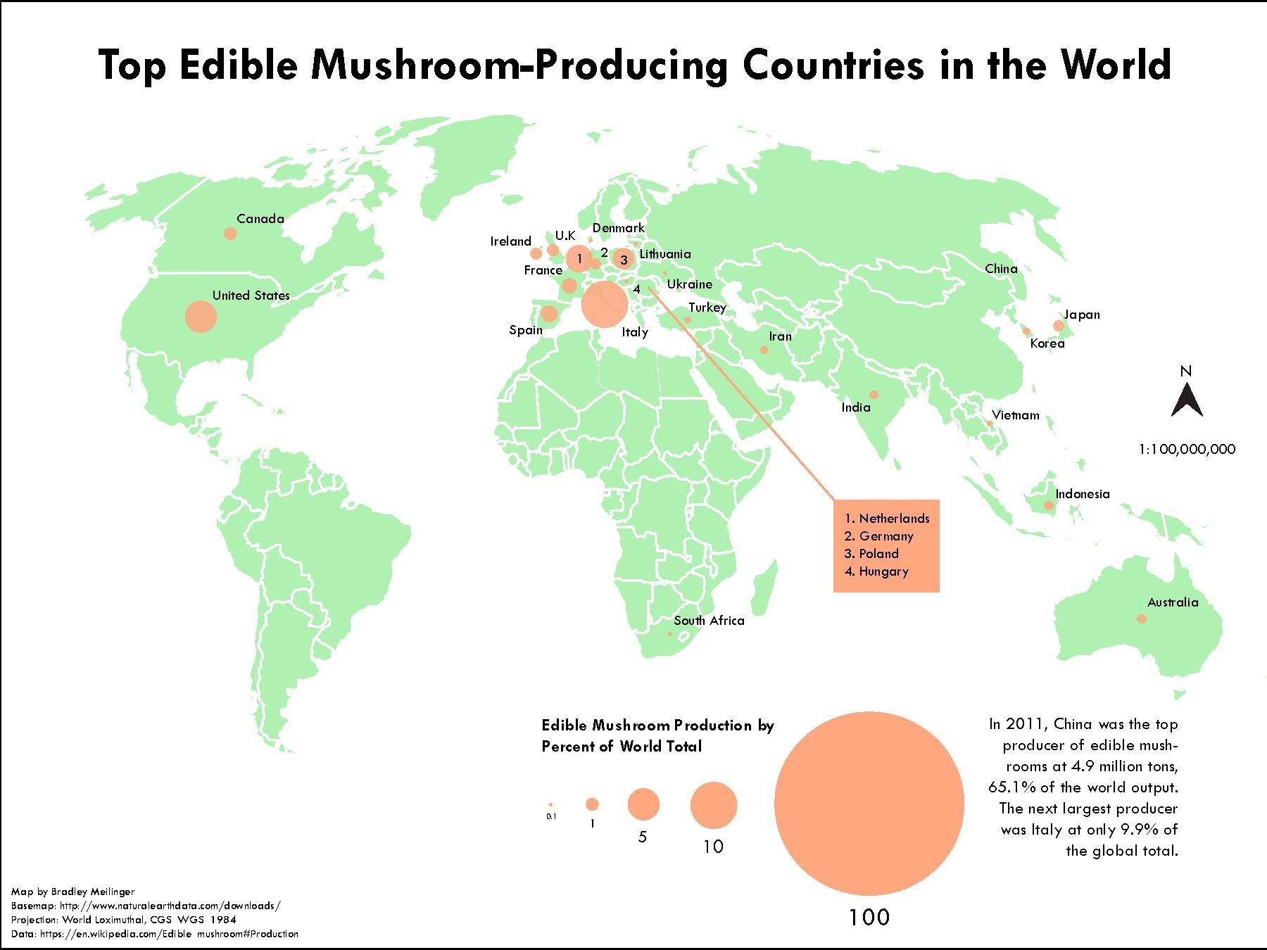 Mushroom World Map.File Top Edible Mushroom Producing Countries In The World Pdf