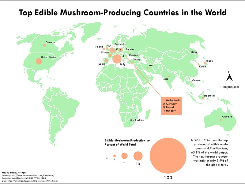 File:Top Edible Mushroom-Producing Countries in the World.pdf